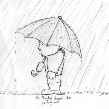 July 6 – Mr. Poogles